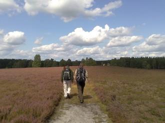 Wandern in der Heide